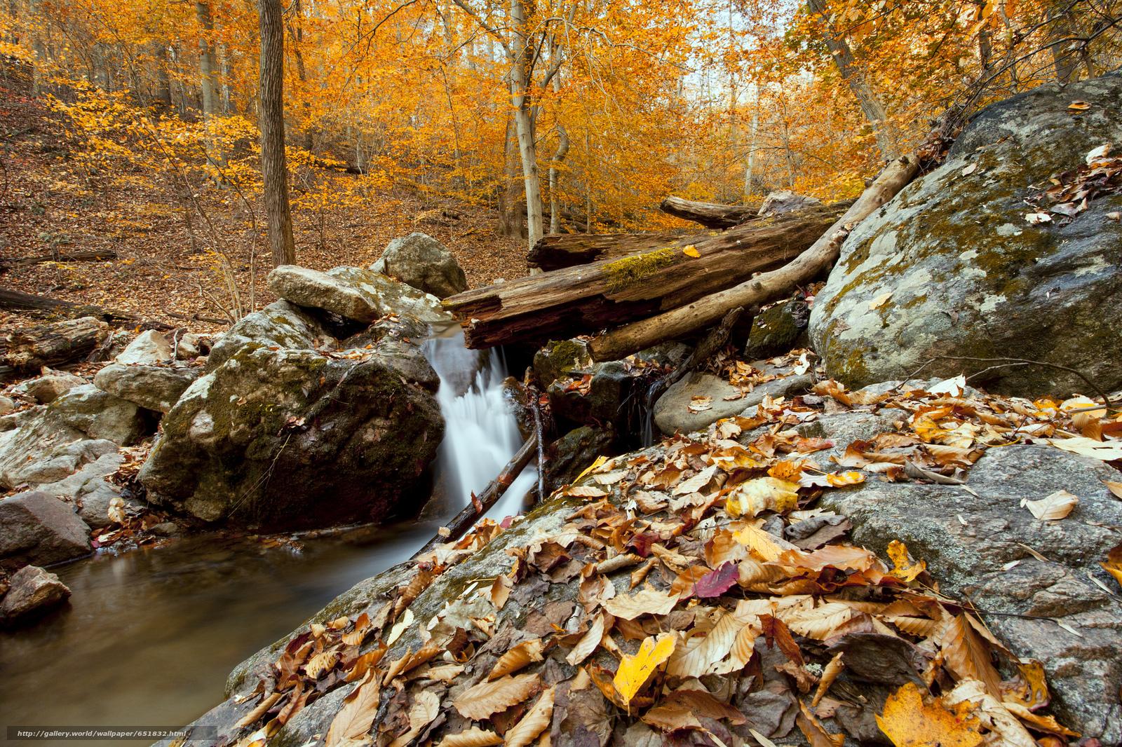 Скачать обои водопад,  скалы,  река,  лес бесплатно для рабочего стола в разрешении 2048x1365 — картинка №651832