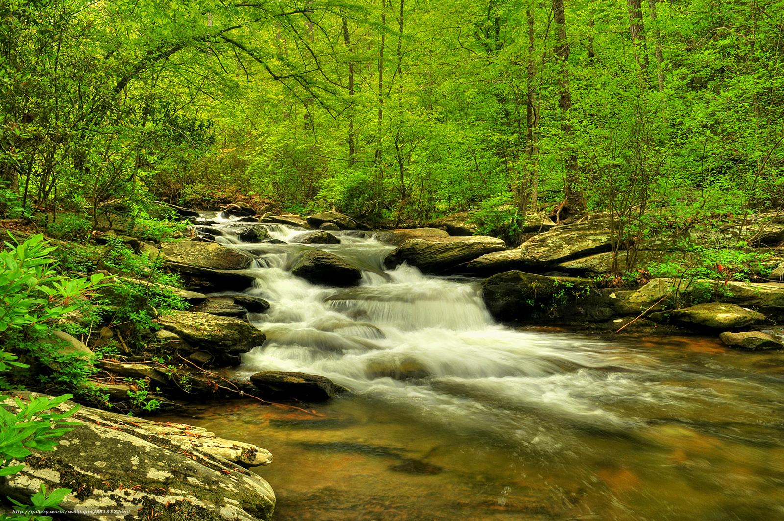 Скачать обои водопад,  скалы,  река,  лес бесплатно для рабочего стола в разрешении 2048x1360 — картинка №651837