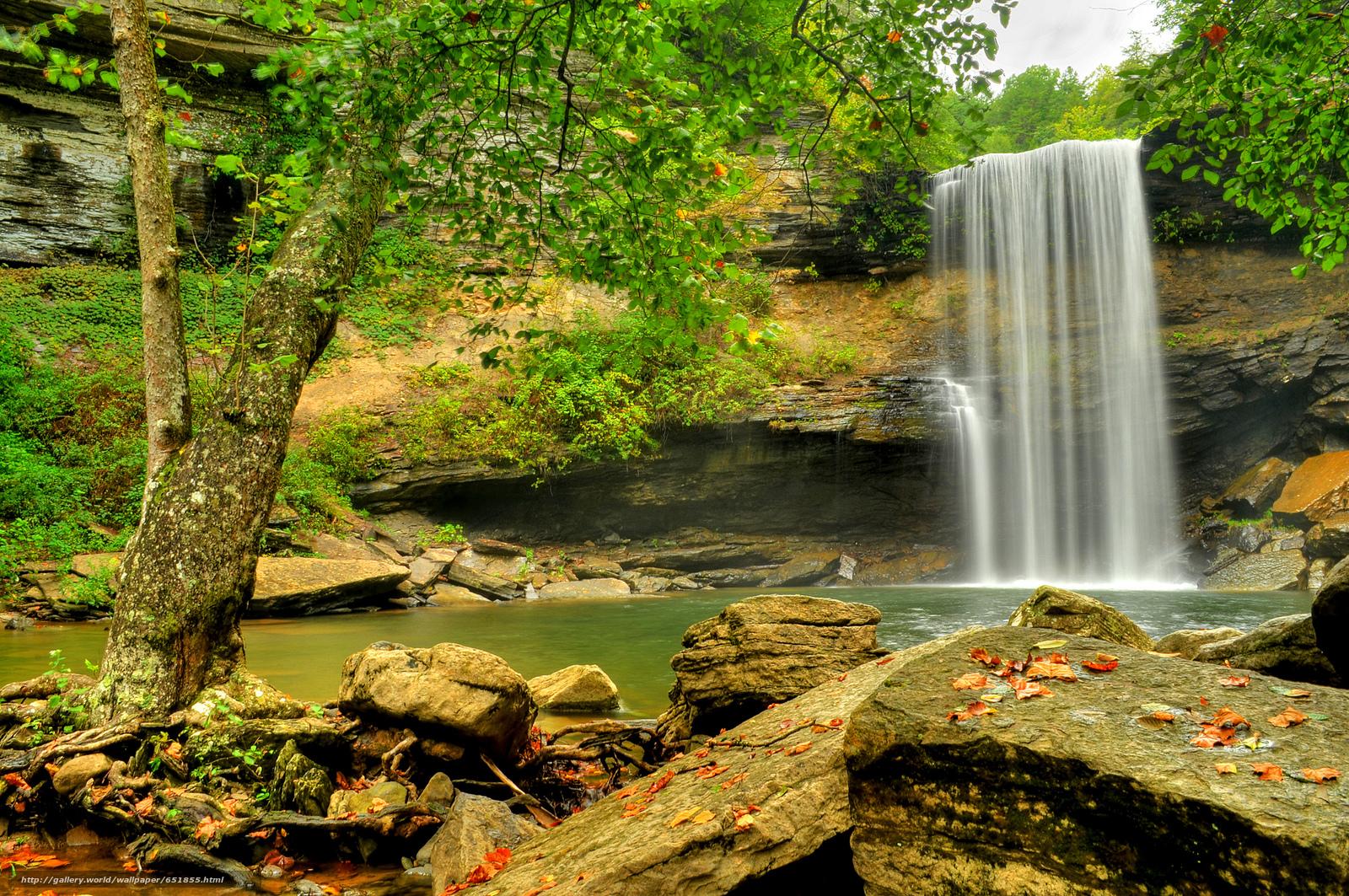 Download Hintergrund Wasserfall,  Rocks,  Fluss,  Wald Freie desktop Tapeten in der Auflosung 2048x1360 — bild №651855