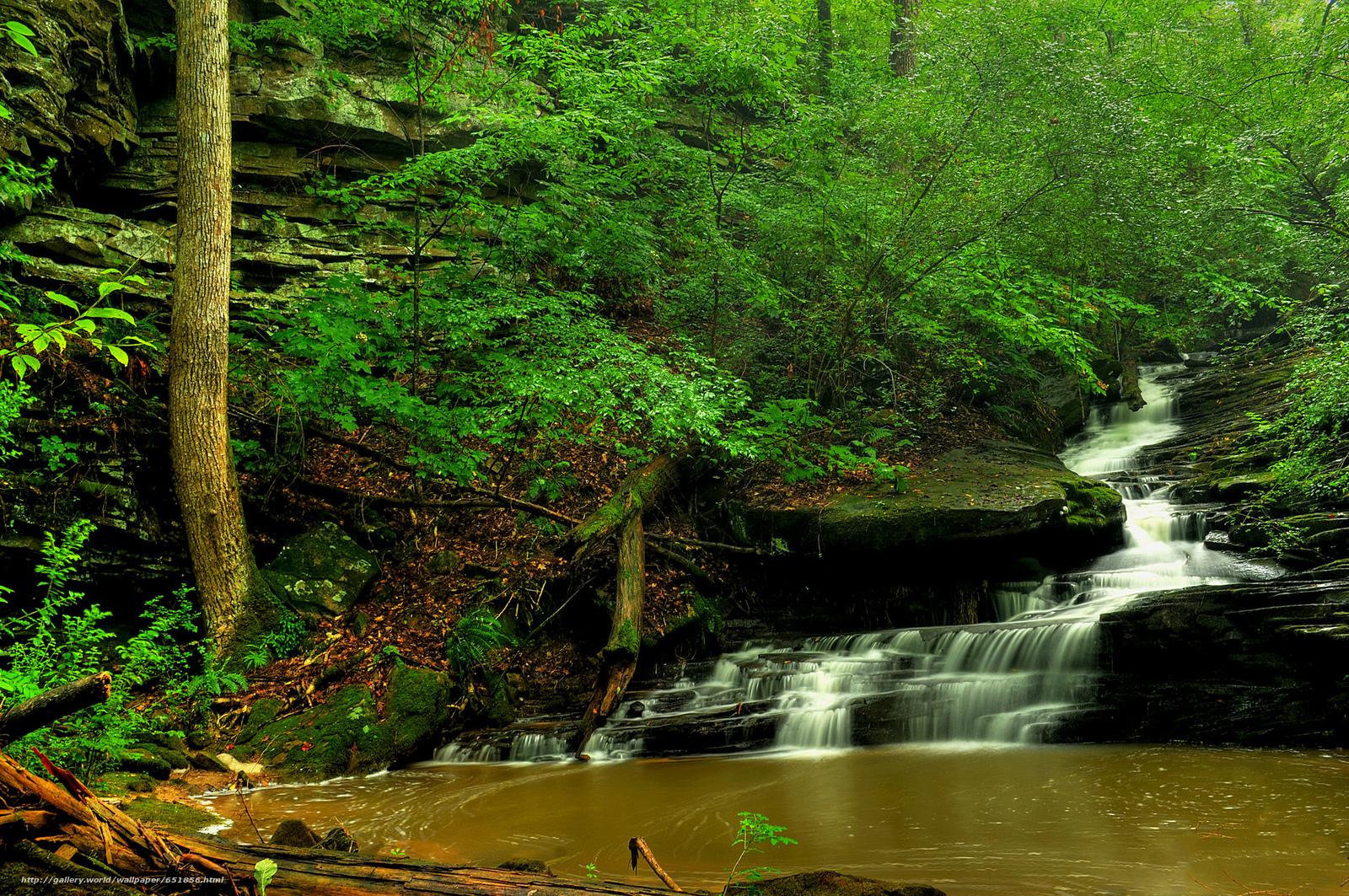 Download Hintergrund Wasserfall,  Rocks,  Fluss,  Wald Freie desktop Tapeten in der Auflosung 2048x1361 — bild №651856