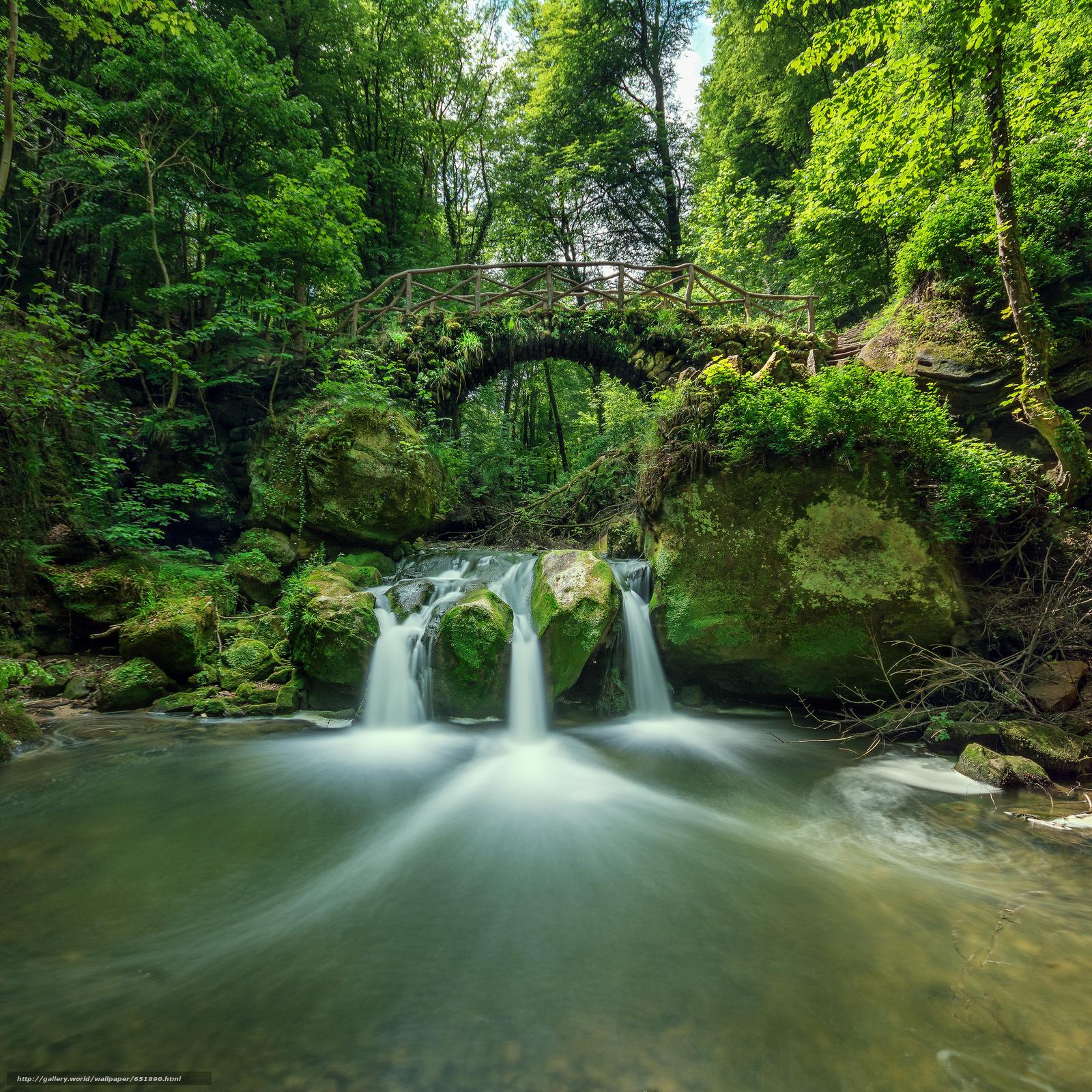 Download Hintergrund Fluss,  Wald,  Bäume,  Wasserfall Freie desktop Tapeten in der Auflosung 2048x2048 — bild №651890