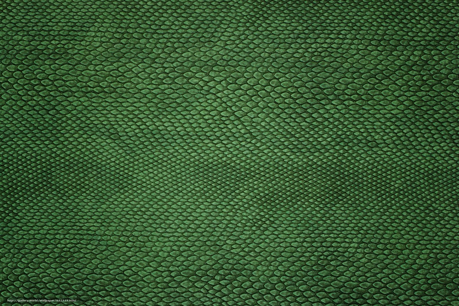 Скачать обои текстура,  текстуры,  кожа,  фон бесплатно для рабочего стола в разрешении 5184x3456 — картинка №652115