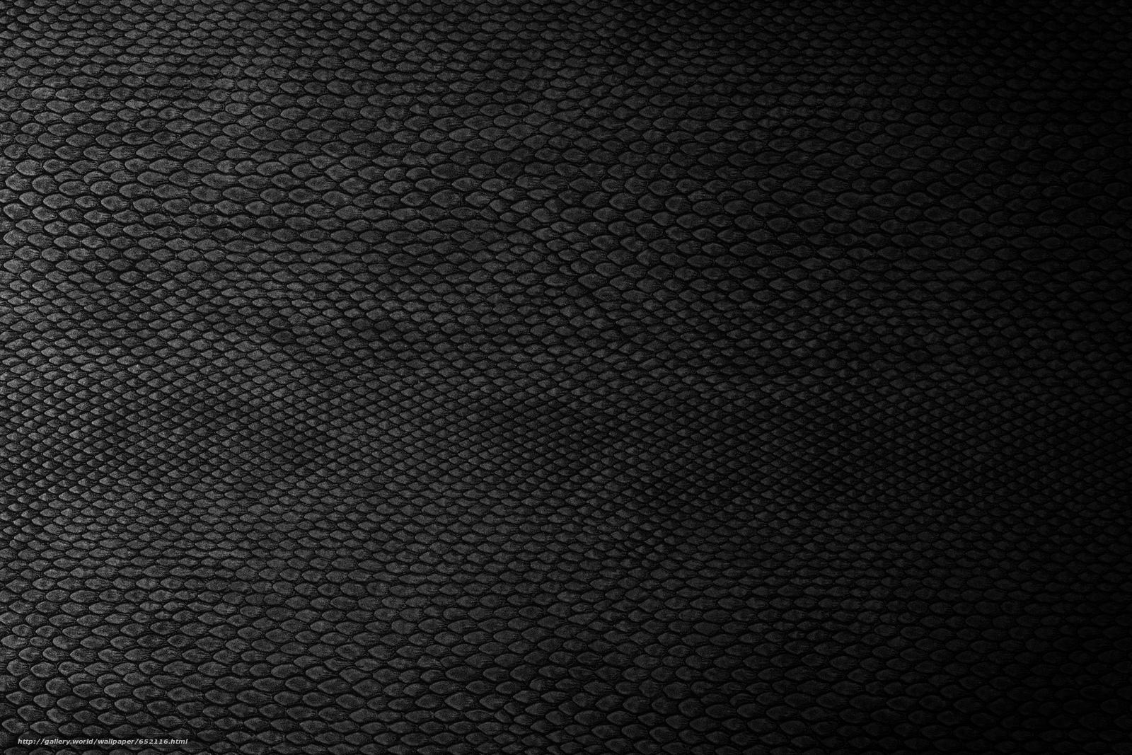 壁紙をダウンロード TEXTURE,  テクスチャー,  肌,  背景 デスクトップの解像度のための無料壁紙 5184x3456 — 絵 №652116