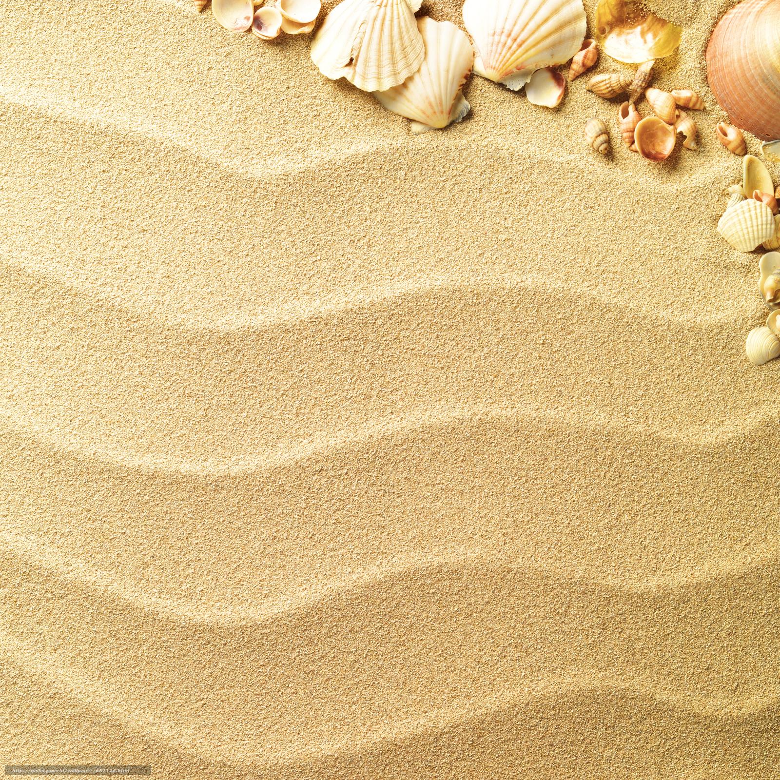 壁紙をダウンロード Texture テクスチャー 貝殻 砂 デスクトップの解像度のための無料壁紙 4646x4646 絵