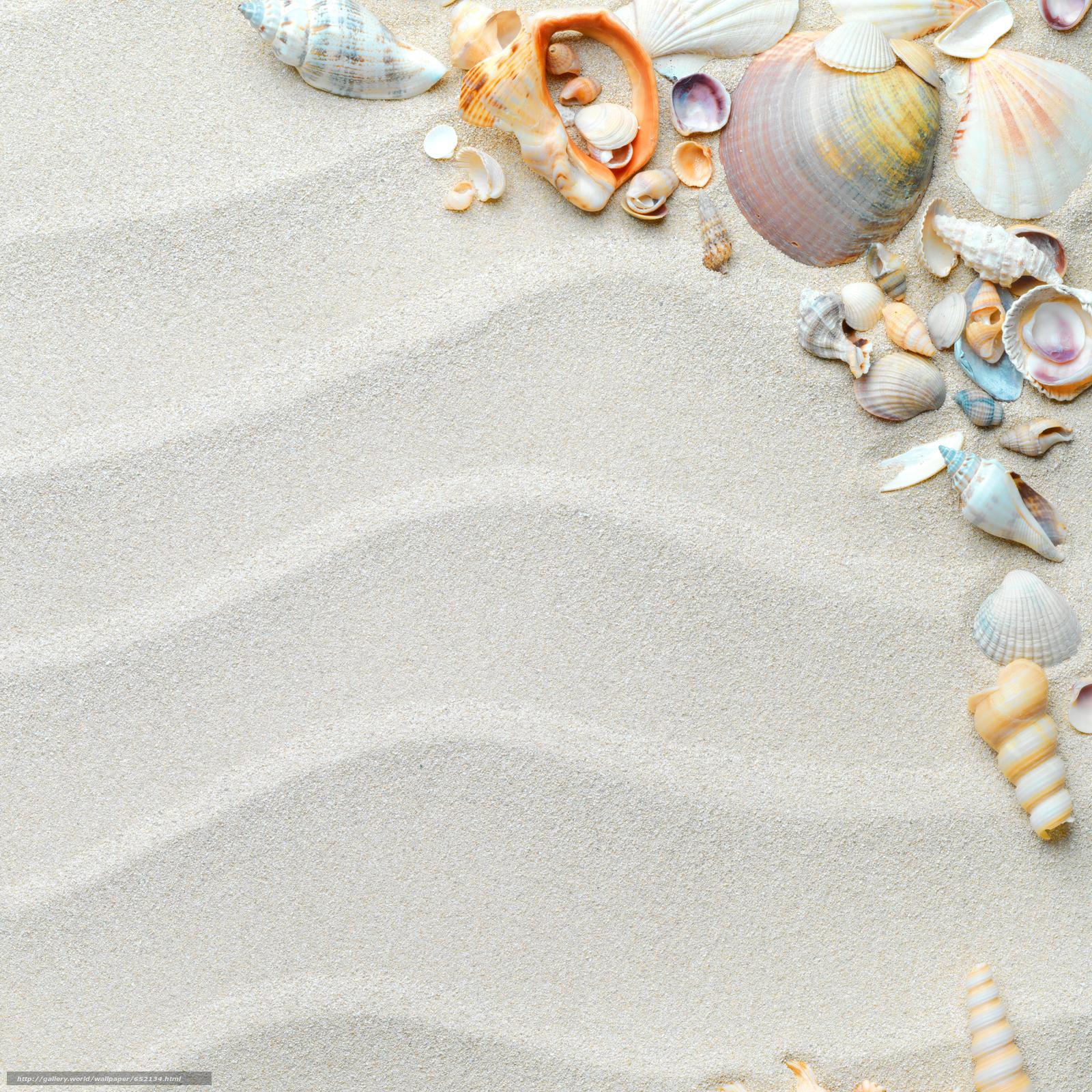 壁紙をダウンロード Texture テクスチャー 貝殻 砂 デスクトップの解像度のための無料壁紙 3932x3932 絵