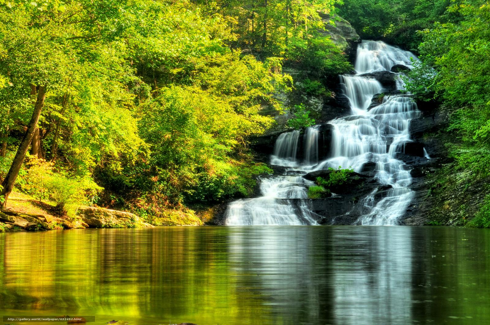 scaricare gli sfondi foresta,  alberi,  Rocce,  cascata Sfondi gratis per la risoluzione del desktop 2048x1360 — immagine №652452