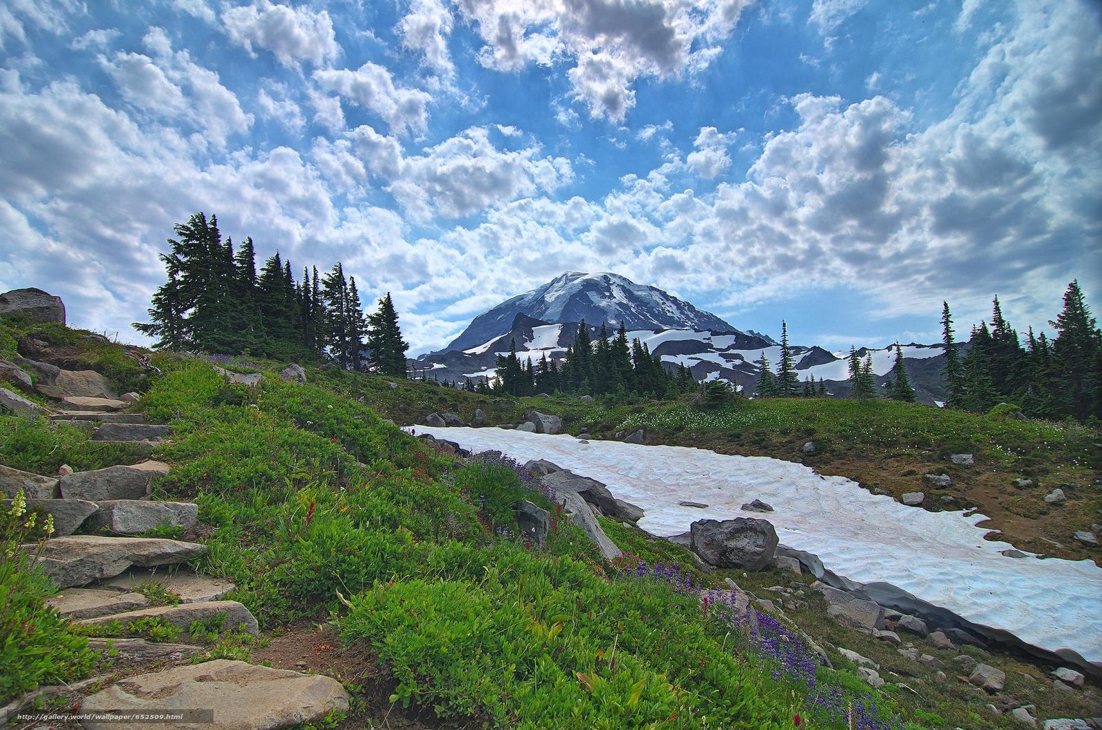 scaricare gli sfondi Mount Rainier National Park,  Montagne,  Colline,  alberi Sfondi gratis per la risoluzione del desktop 4907x3251 — immagine №652509