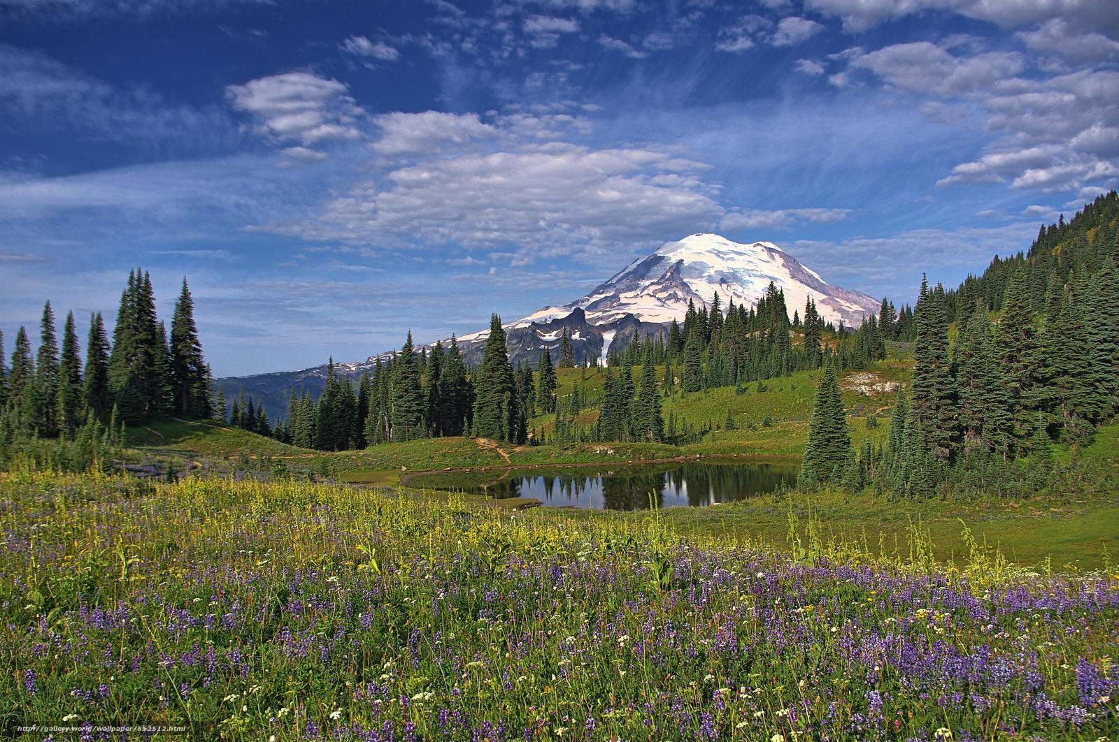 scaricare gli sfondi Mount Rainier National Park,  Montagne,  lago,  alberi Sfondi gratis per la risoluzione del desktop 4271x2835 — immagine №652512