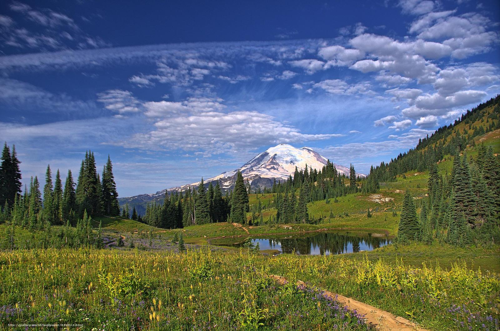 scaricare gli sfondi Mount Rainier National Park,  Montagne,  lago,  alberi Sfondi gratis per la risoluzione del desktop 4265x2832 — immagine №652513