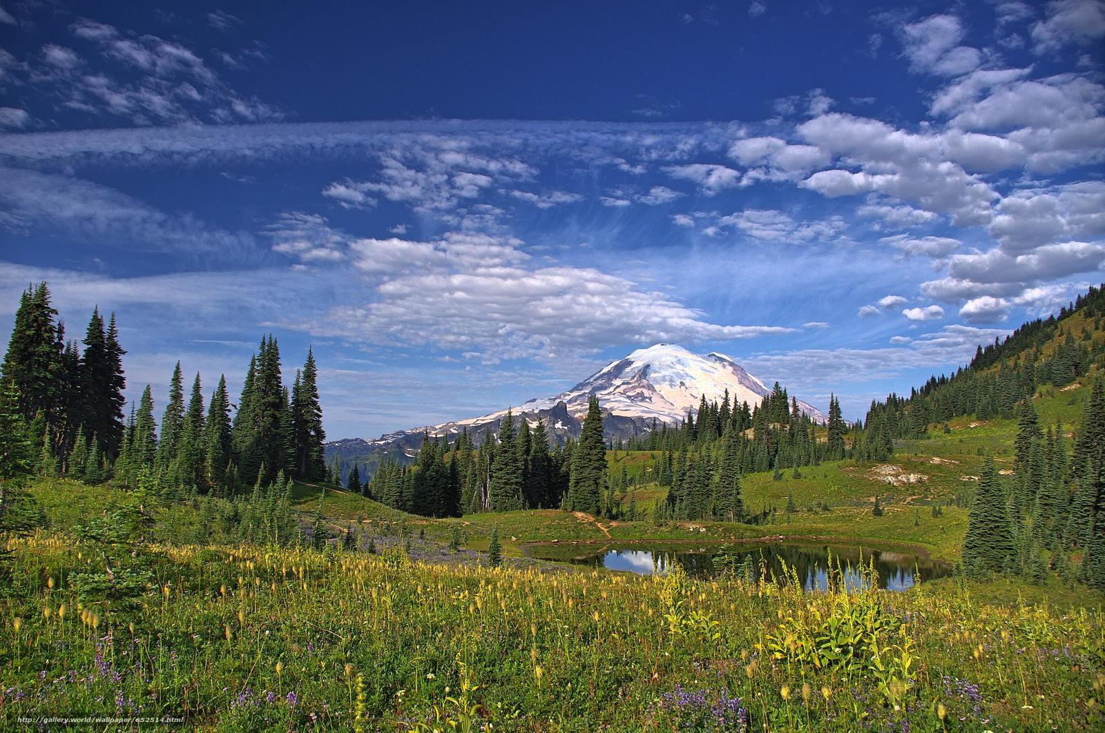 scaricare gli sfondi Mount Rainier National Park,  Montagne,  lago,  alberi Sfondi gratis per la risoluzione del desktop 4278x2840 — immagine №652514