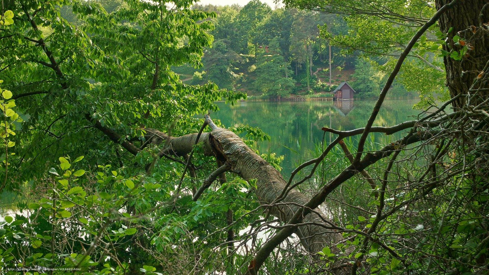 Скачать обои озеро,  деревья,  домик,  пейзаж бесплатно для рабочего стола в разрешении 5090x2863 — картинка №652602