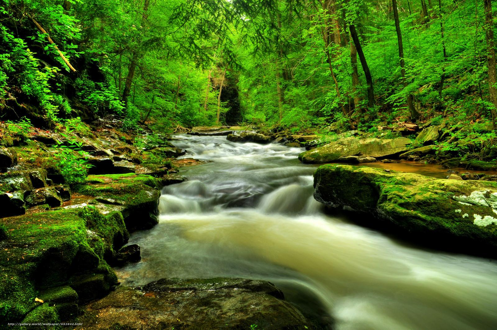 Baixar Wallpaper floresta,  rio,  cachoeira,  Rochas Papis de parede grtis na resoluo 2048x1361 — quadro №652842