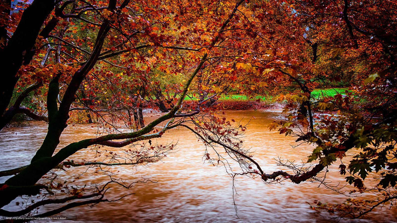scaricare gli sfondi fiume,  autunno,  alberi,  natura Sfondi gratis per la risoluzione del desktop 2048x1152 — immagine №652862