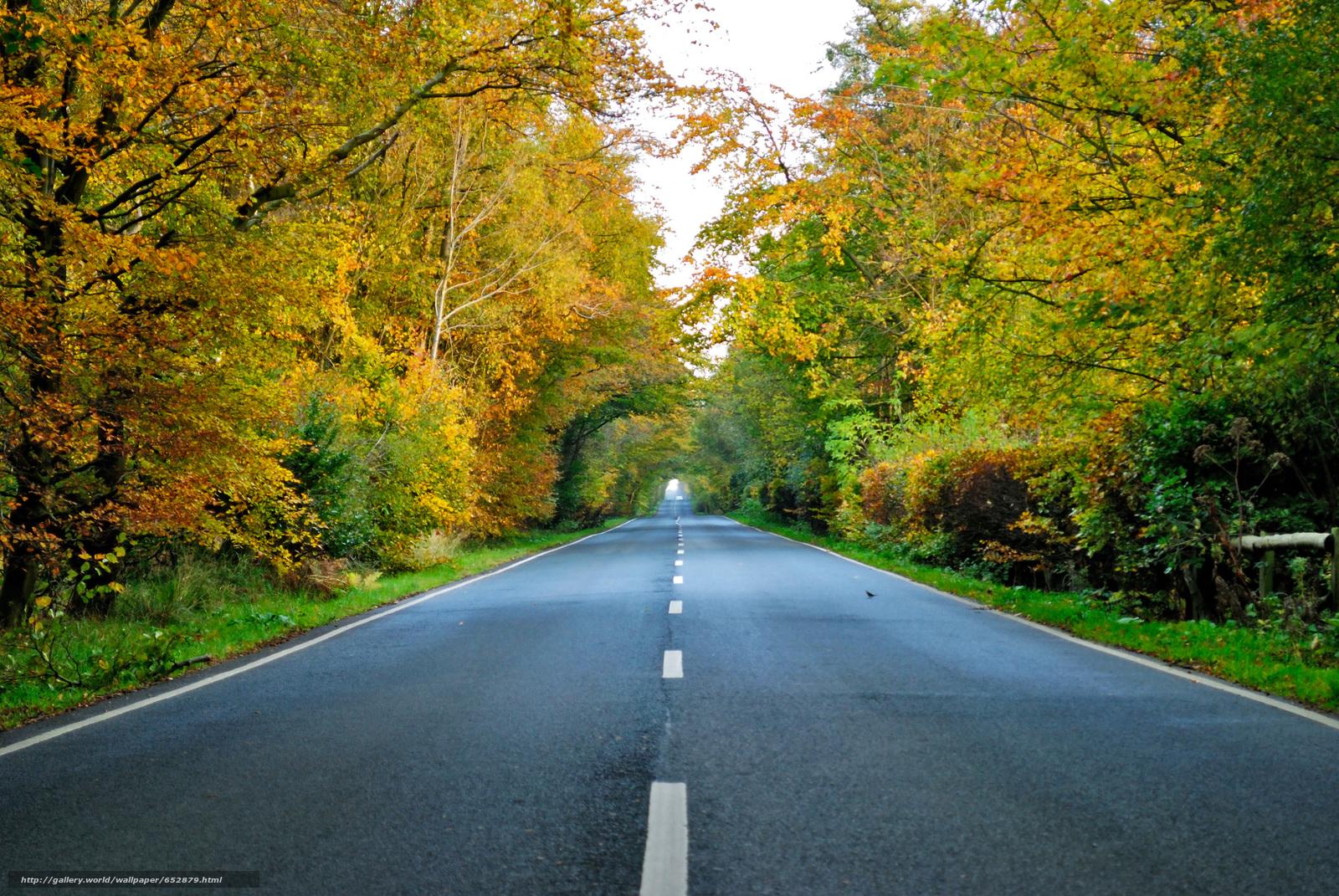 scaricare gli sfondi autunno,  stradale,  alberi,  paesaggio Sfondi gratis per la risoluzione del desktop 3872x2592 — immagine №652879