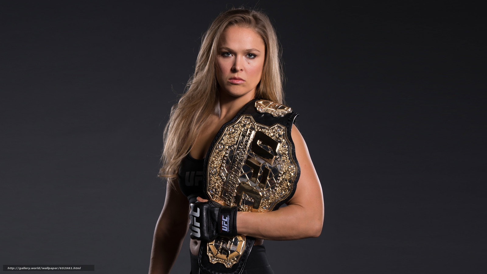 Download wallpaper mma,  ufc,  ronda rousey,  Fighter free desktop wallpaper in the resolution 3383x1903 — picture №652981