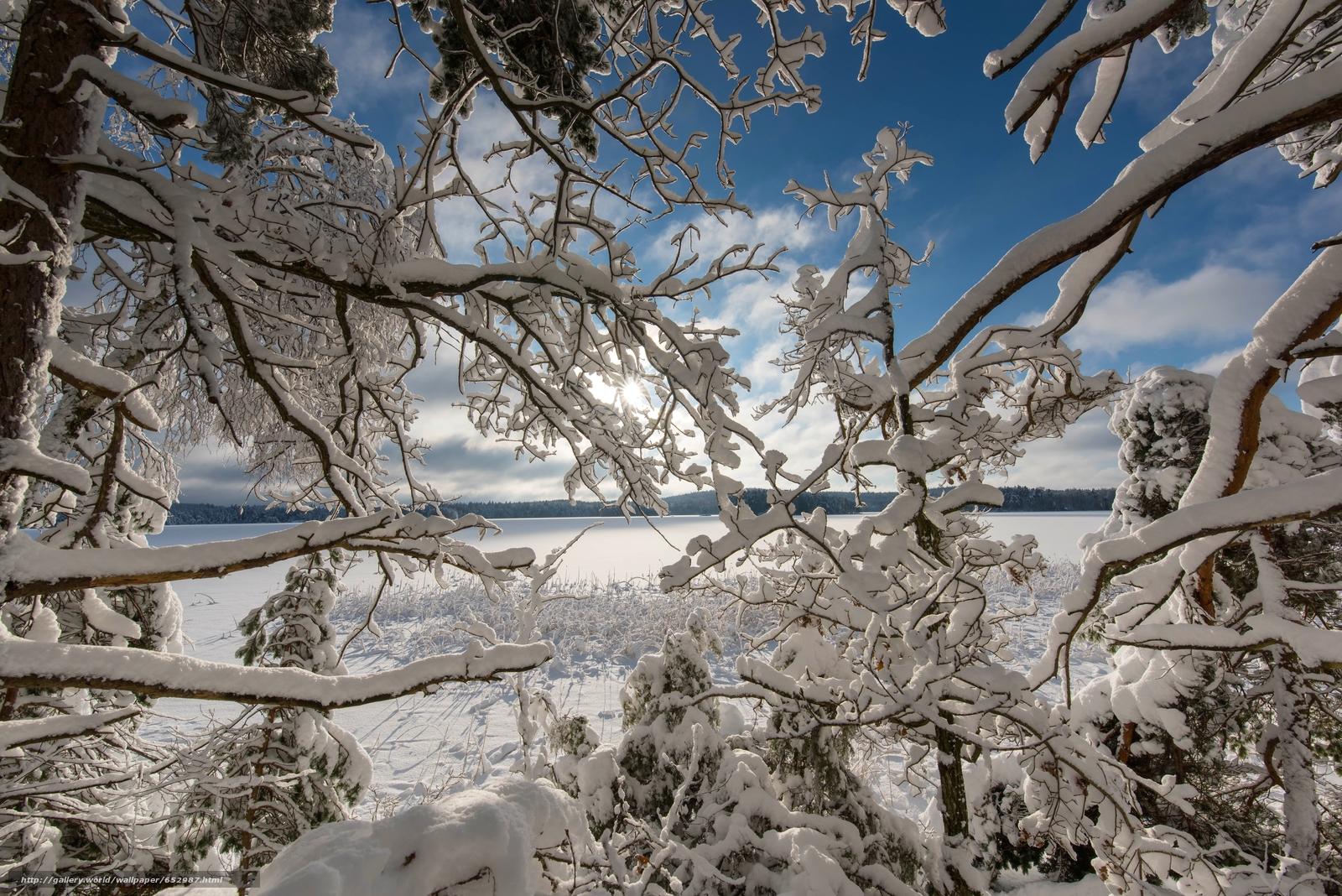 scaricare gli sfondi inverno,  nevicata,  lago,  alberi Sfondi gratis per la risoluzione del desktop 7360x4912 — immagine №652987
