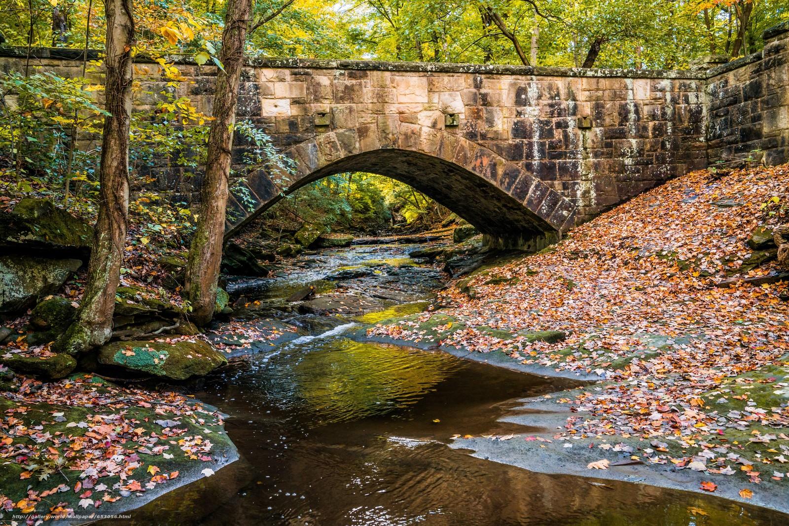 Скачать обои осень,  речка,  мост,  деревья бесплатно для рабочего стола в разрешении 7952x5304 — картинка №653056