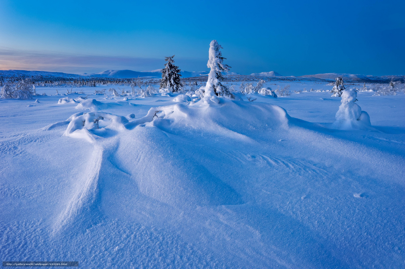 Download wallpaper Gitsfjällets Nature Reserve,  Lapland,  Sweden,  Lapland free desktop wallpaper in the resolution 2048x1365 — picture №653296
