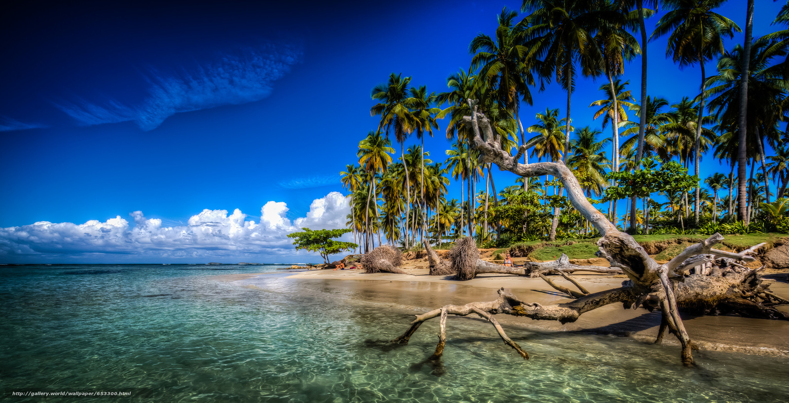 Download wallpaper las terrenas samana dominican - Dominican republic wallpaper ...