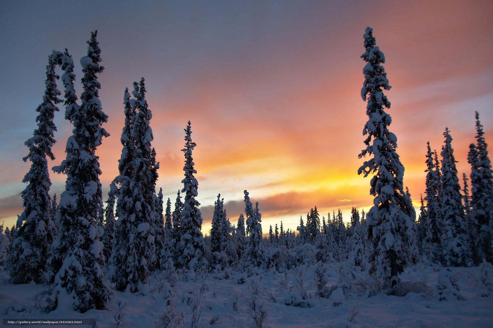 scaricare gli sfondi alaska - photo #3