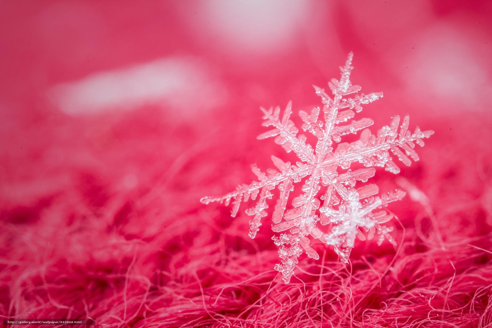 Download wallpaper snowflake,  Macro,  red free desktop wallpaper in the resolution 5184x3456 — picture №653568