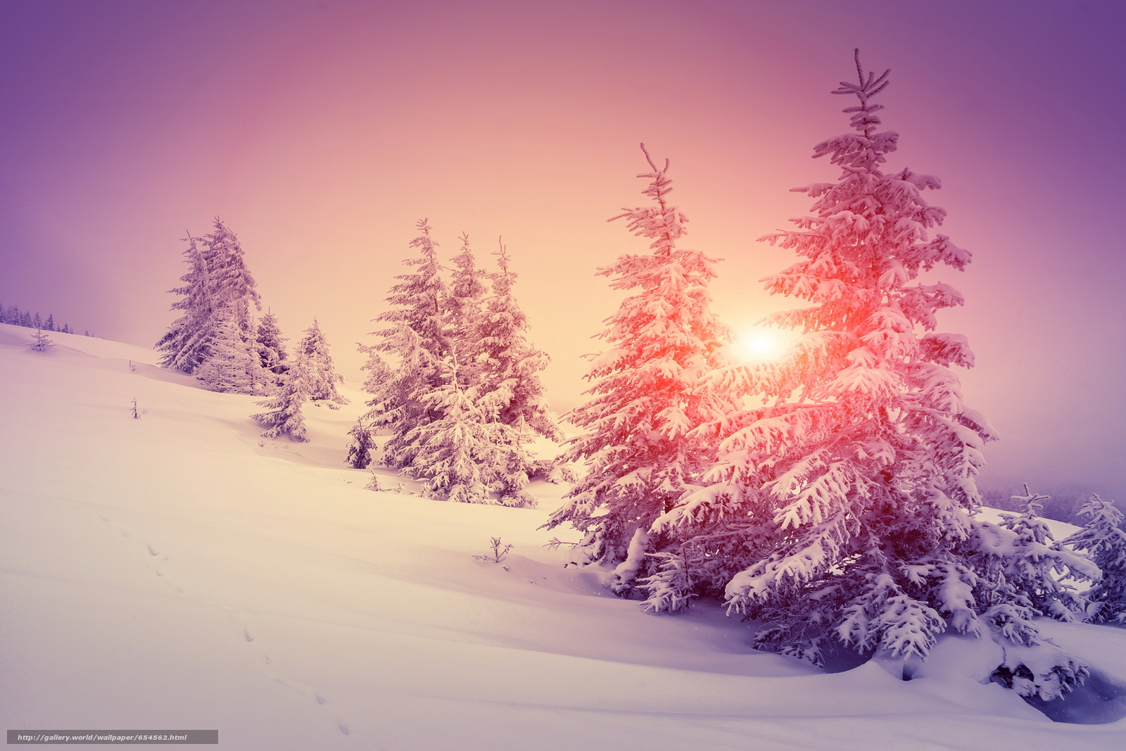 Download wallpaper winter,  snow,  drifts,  spruce free desktop wallpaper in the resolution 6800x4533 — picture №654562
