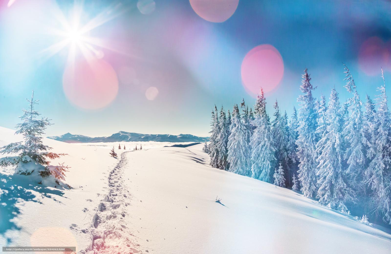 Скачать обои зима,  снег,  сугробы,  ели бесплатно для рабочего стола в разрешении 5600x3640 — картинка №654563