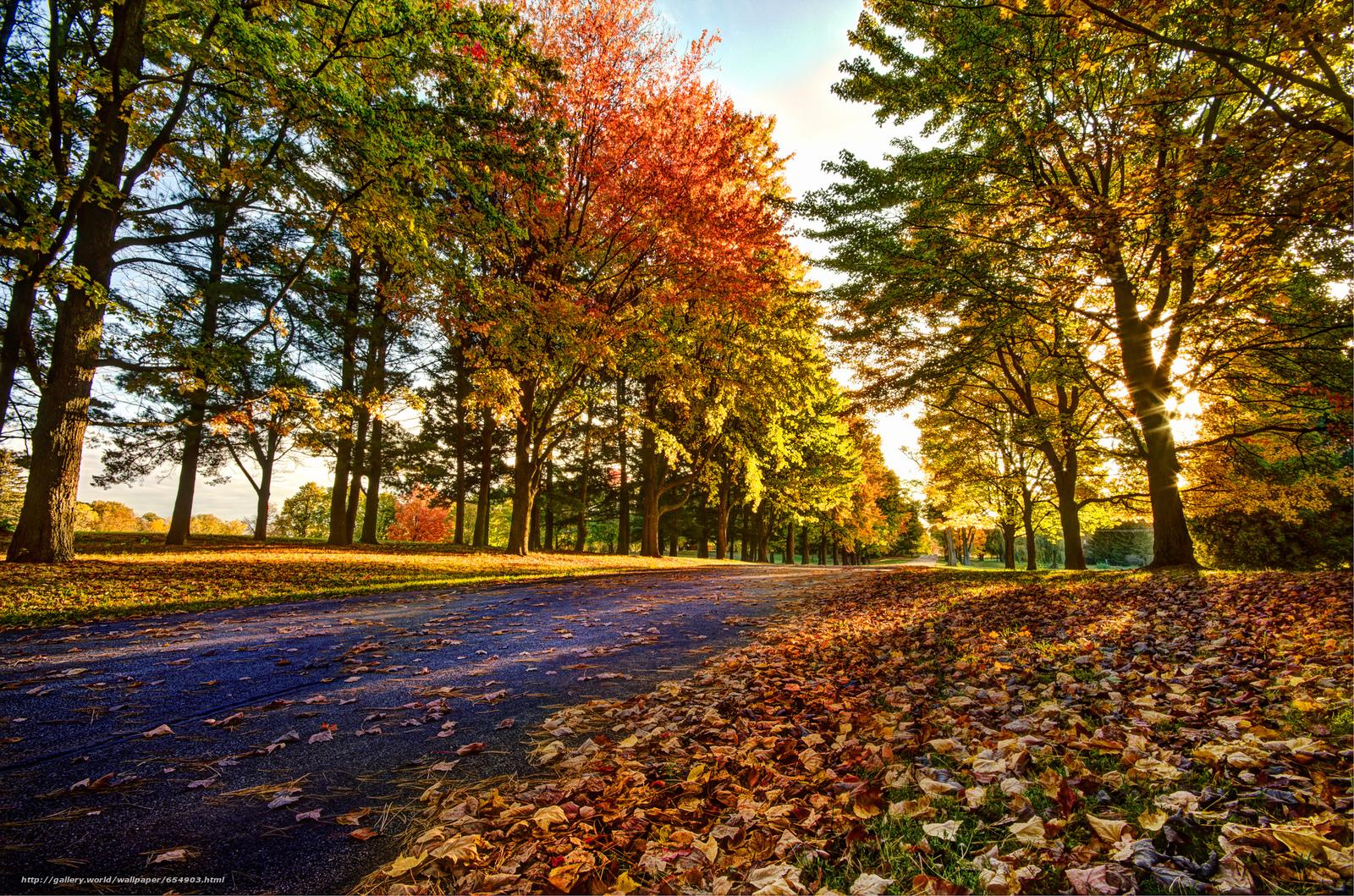 Tlcharger Fond d'ecran automne,  route,  arbres,  paysage Fonds d'ecran gratuits pour votre rsolution du bureau 2048x1356 — image №654903