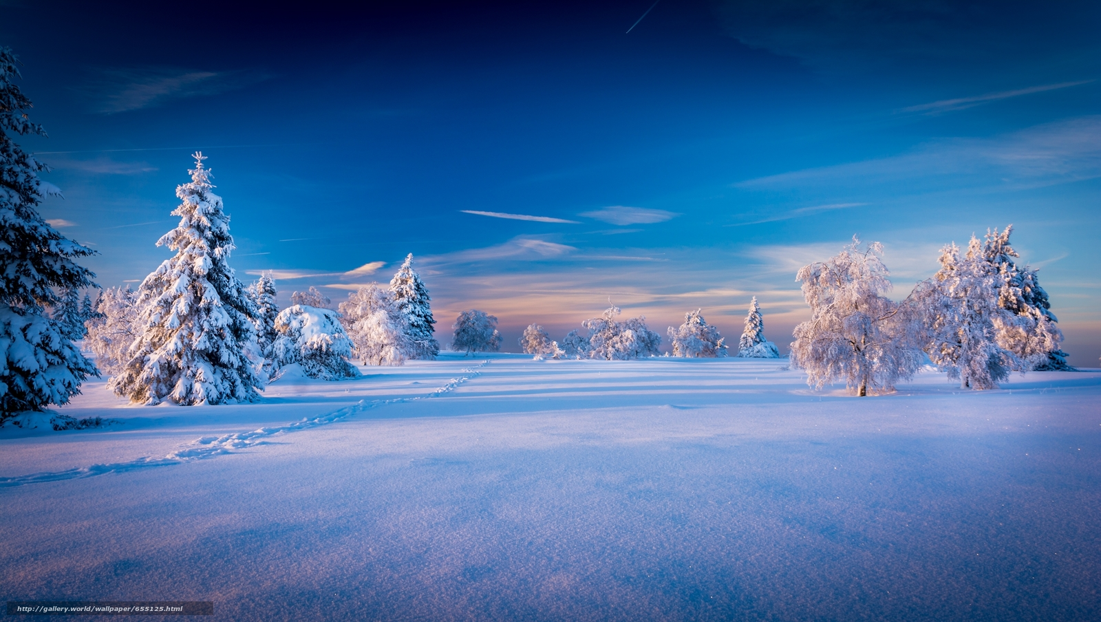 Download wallpaper winter,  snow,  drifts,  trees free desktop wallpaper in the resolution 2500x1412 — picture №655125