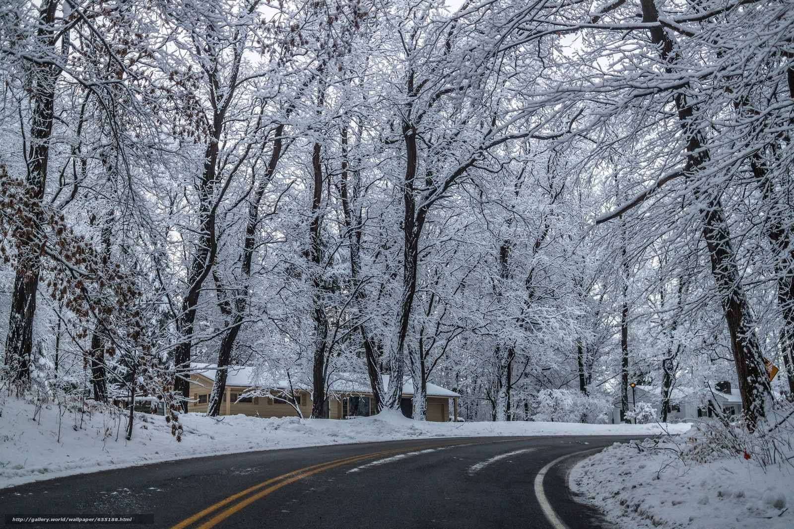 Download wallpaper winter,  road,  home,  trees free desktop wallpaper in the resolution 2048x1365 — picture №655188