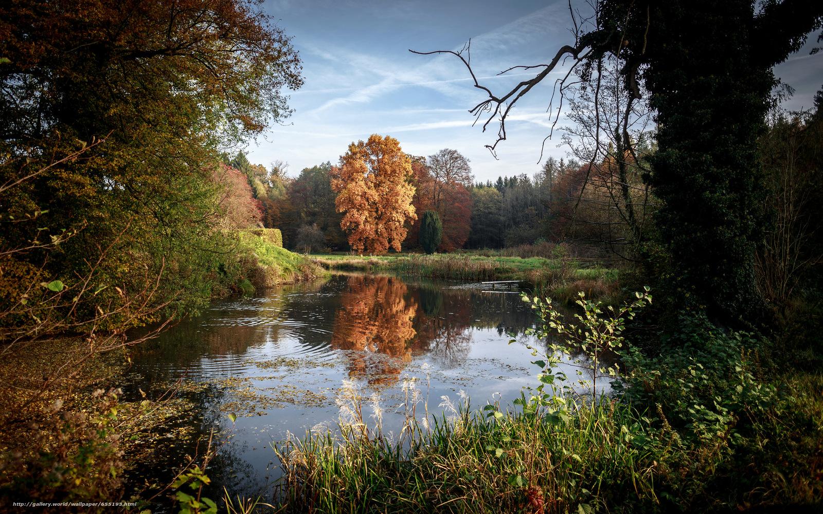 Скачать обои озеро,  осень,  деревья,  природа бесплатно для рабочего стола в разрешении 2048x1280 — картинка №655193