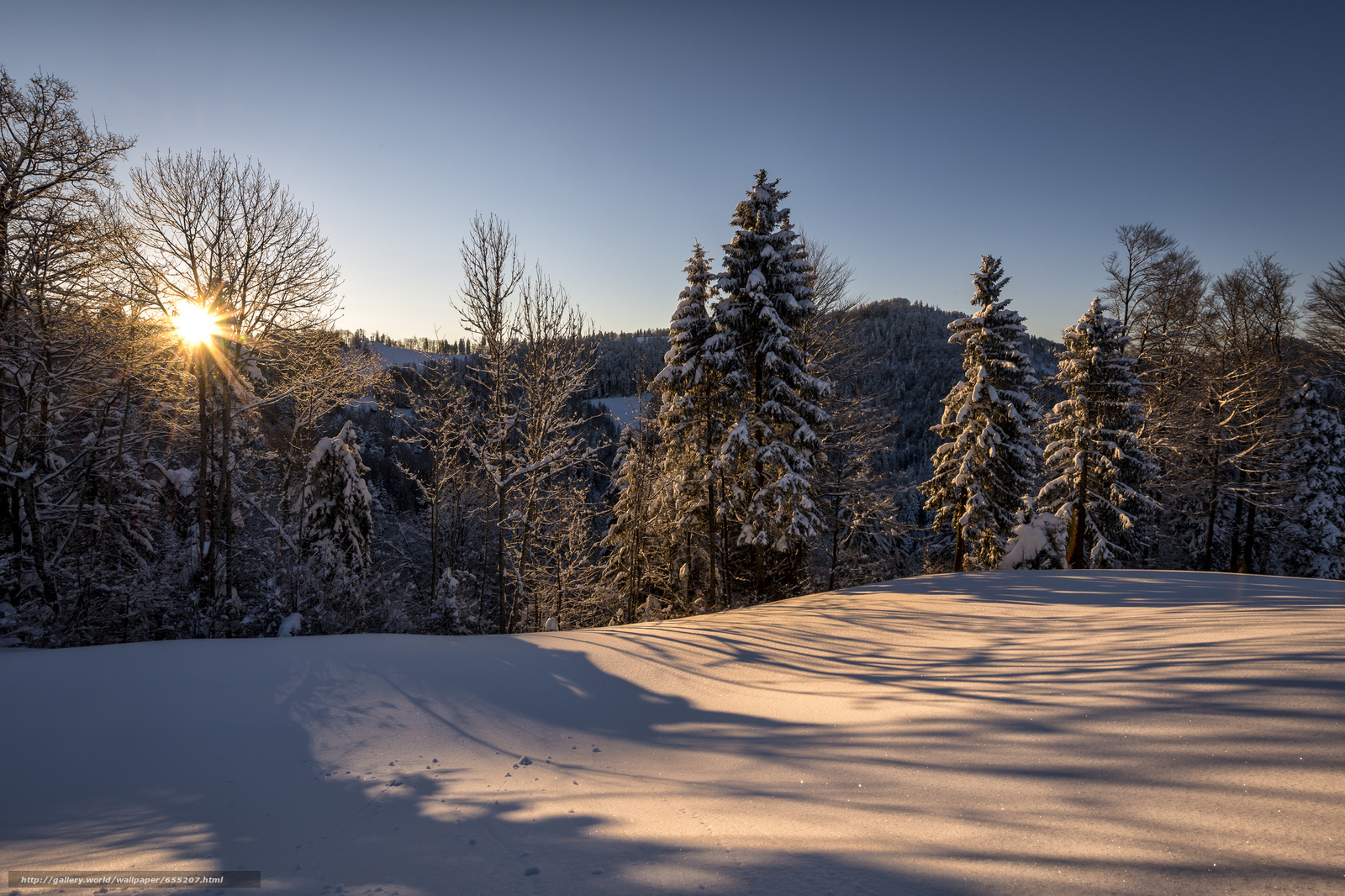 Download wallpaper sunset,  winter,  snow,  trees free desktop wallpaper in the resolution 2048x1365 — picture №655207