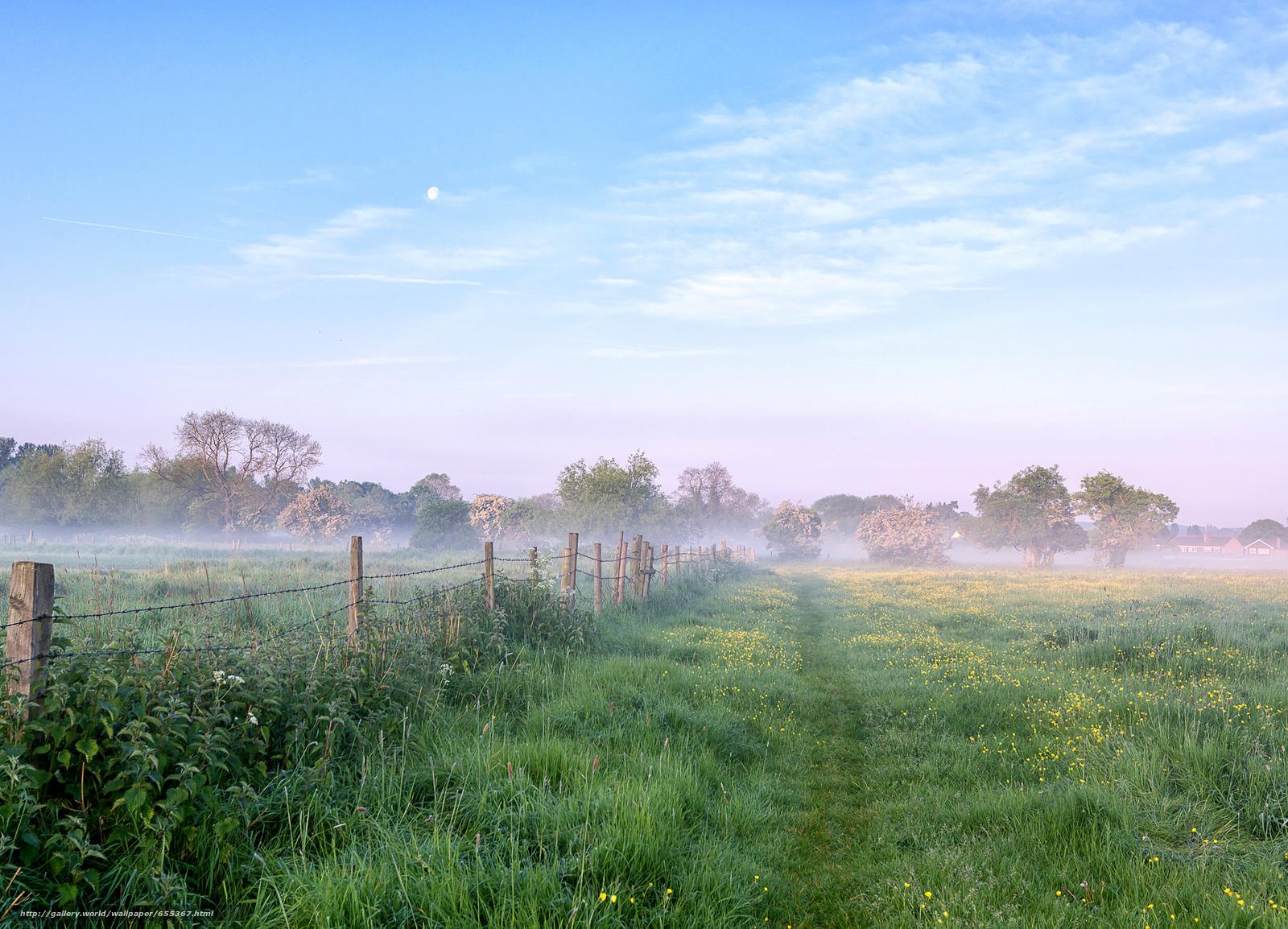 Download wallpaper field,  morning,  road,  fog free desktop wallpaper in the resolution 2048x1477 — picture №655367