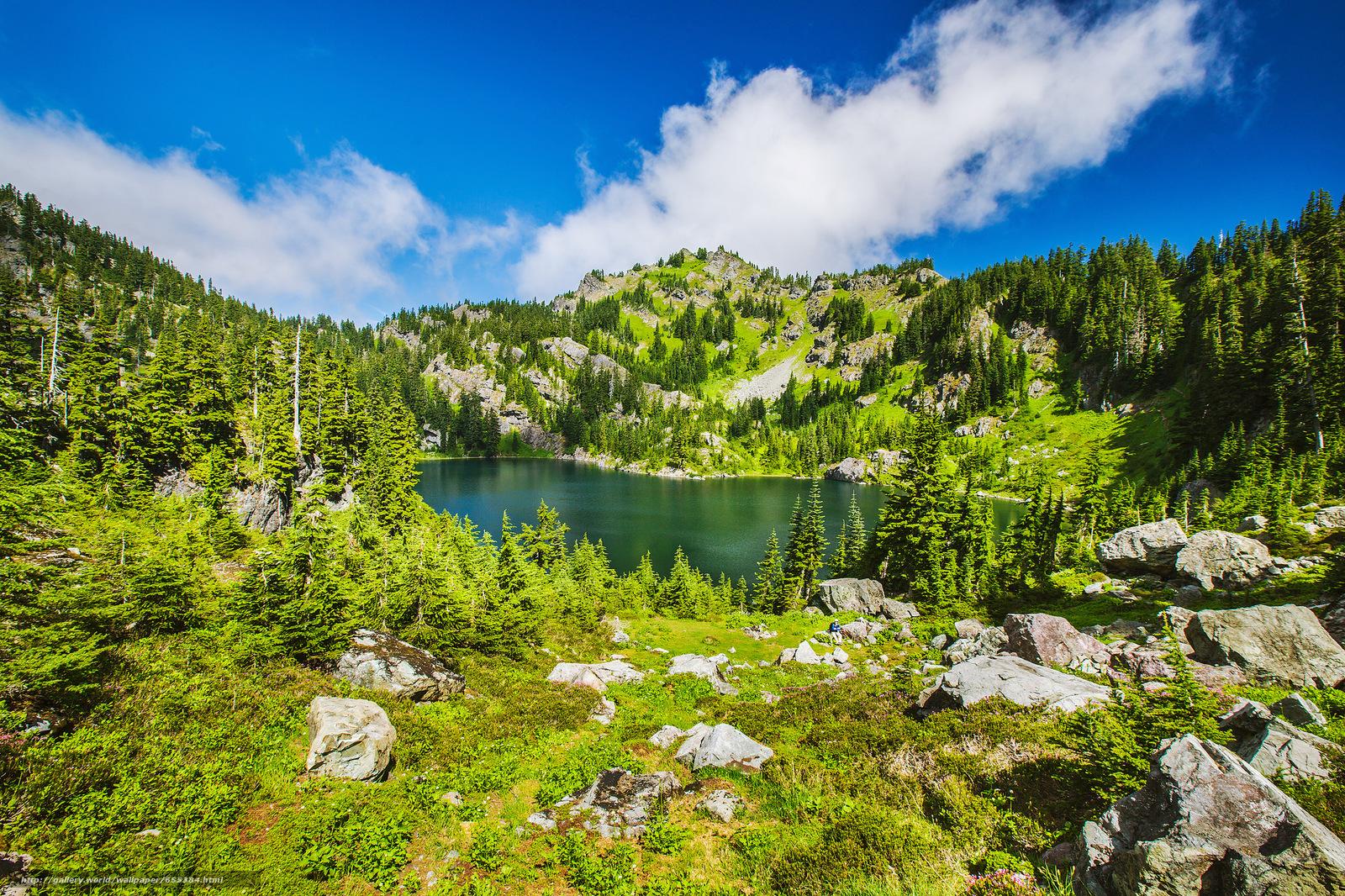 scaricare gli sfondi lago,  Montagne,  alberi,  paesaggio Sfondi gratis per la risoluzione del desktop 2048x1365 — immagine №655384