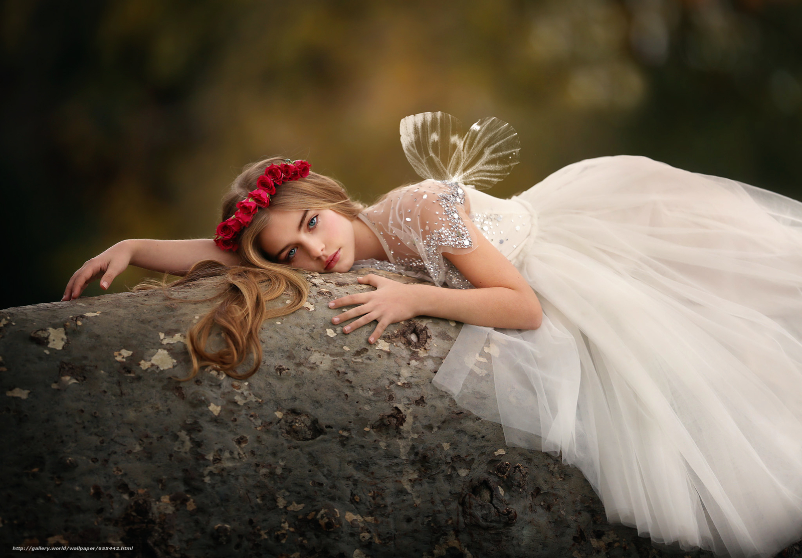 Download wallpaper girl,  dress,  Wings,  wreath free desktop wallpaper in the resolution 2048x1424 — picture №655442