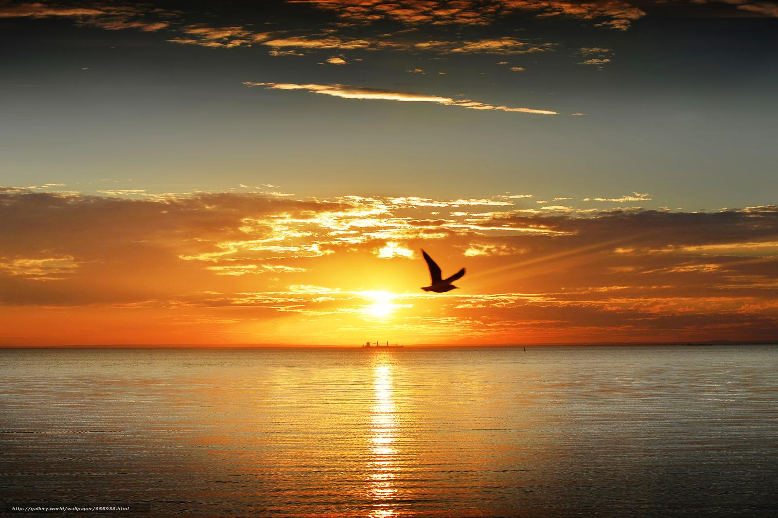 壁紙をダウンロード 日没,  海,  波浪,  風景 デスクトップの解像度のための無料壁紙 4219x2808 — 絵 №655938
