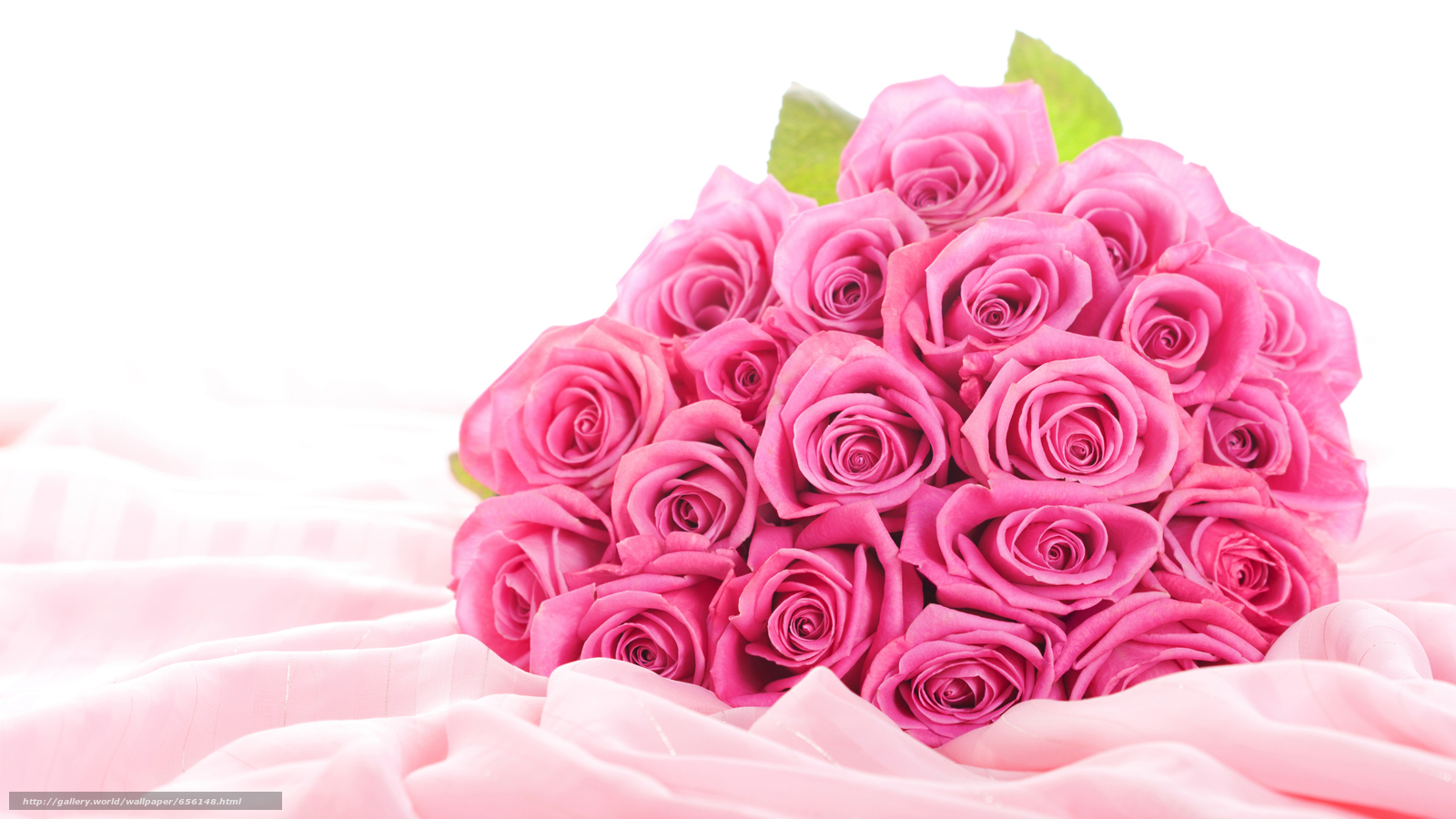 Download wallpaper Personas by Kisenok,  Roses,  pink,  Flowers free desktop wallpaper in the resolution 4752x2673 — picture №656148