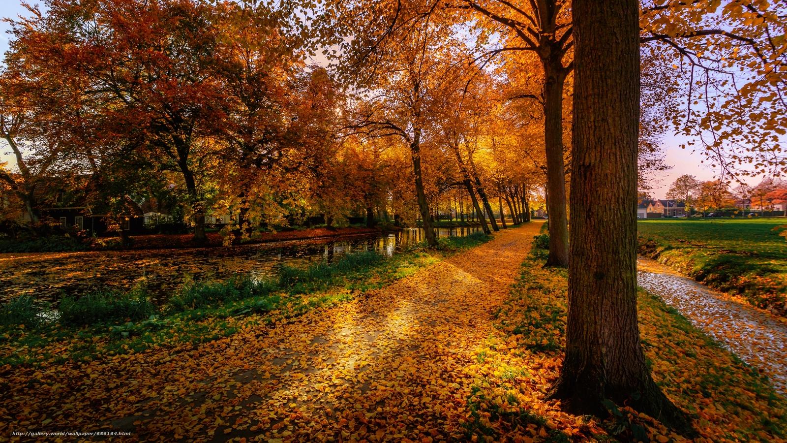 Descargar gratis otoño,  parque,  carretera,  árboles Fondos de escritorio en la resolucin 3641x2048 — imagen №656164