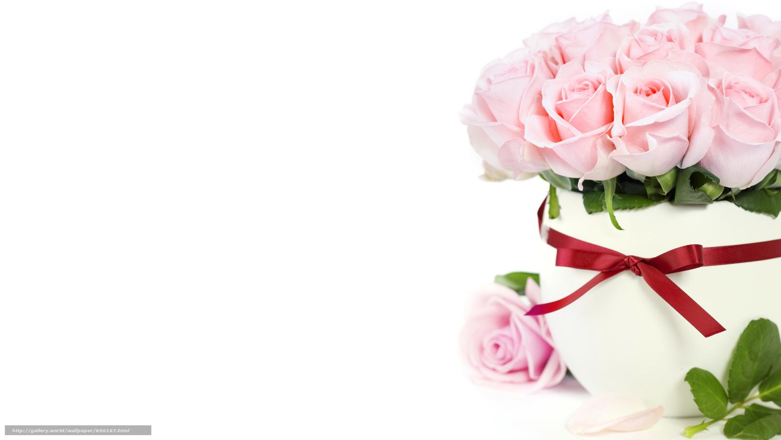 scaricare gli sfondi Personas per Kisenok,  Roses,  rosa,  Fiori Sfondi gratis per la risoluzione del desktop 6812x3838 — immagine №656167