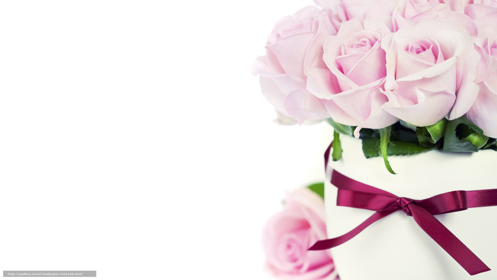 Download wallpaper Personas by Kisenok,  Roses,  pink,  Flowers free desktop wallpaper in the resolution 5607x3154 — picture №656168