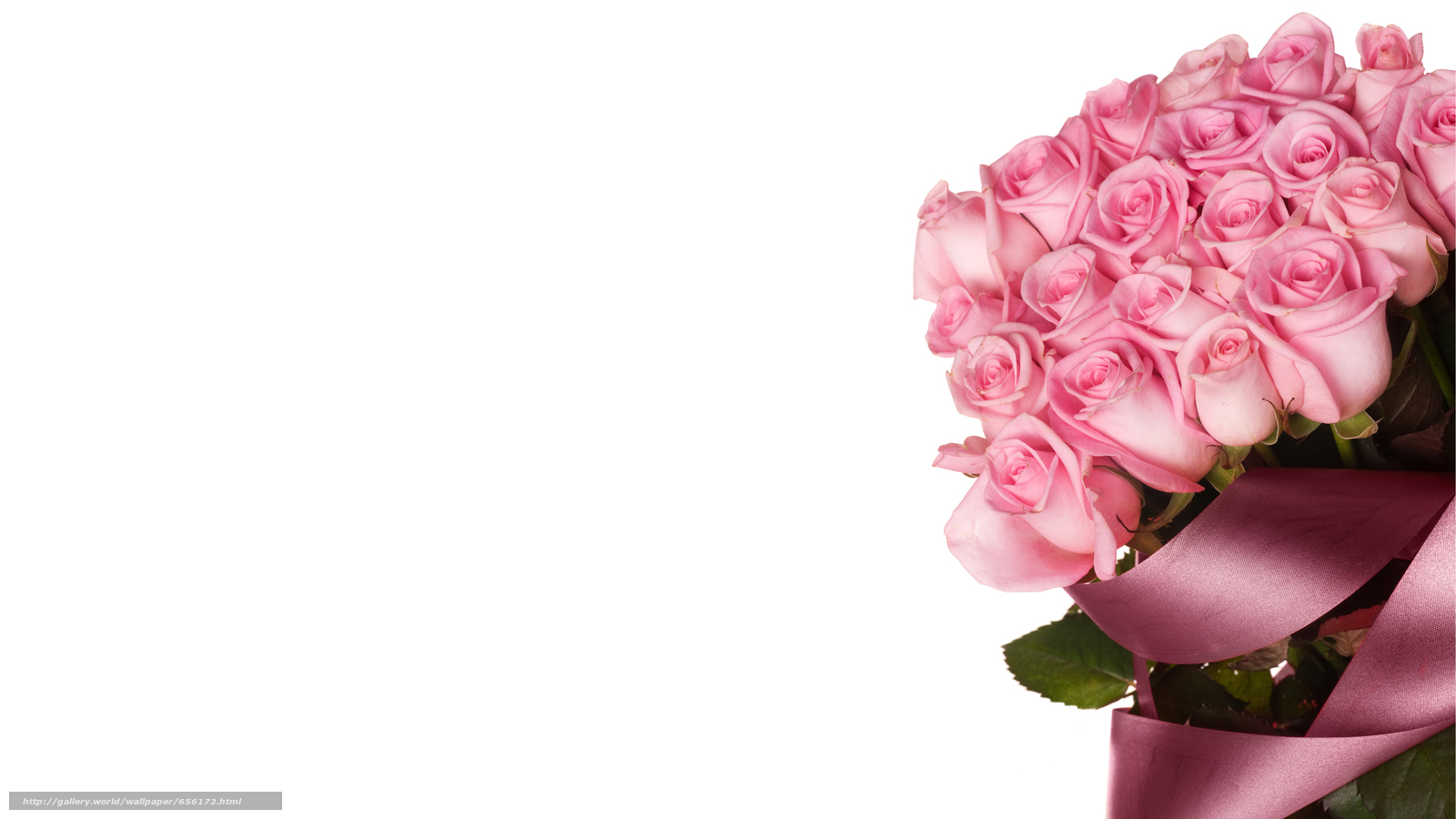 Download wallpaper Personas by Kisenok,  Roses,  pink,  Flowers free desktop wallpaper in the resolution 6407x3603 — picture №656172