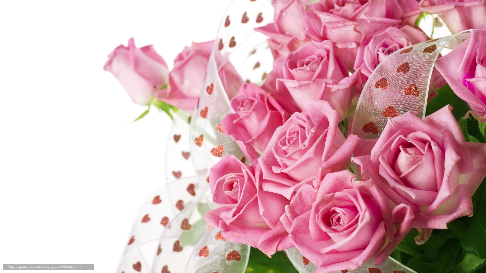 Download wallpaper Personas by Kisenok,  Roses,  pink,  Flowers free desktop wallpaper in the resolution 10027x5640 — picture №656248