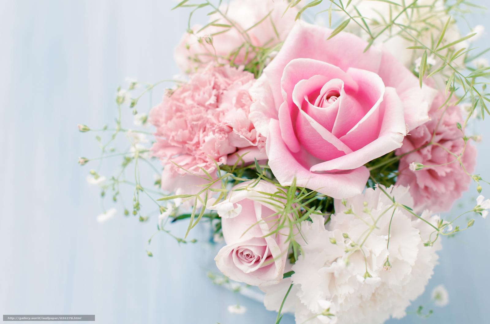 Скачать обои обои от Kisenok,  розы,  розовые,  цветы бесплатно для рабочего стола в разрешении 6040x4000 — картинка №656278