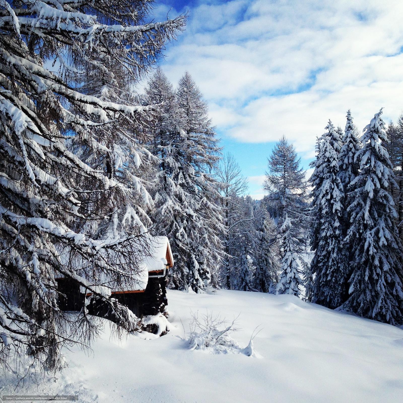 Скачать обои зима,  снег,  деревья,  домик бесплатно для рабочего стола в разрешении 2209x2209 — картинка №656312