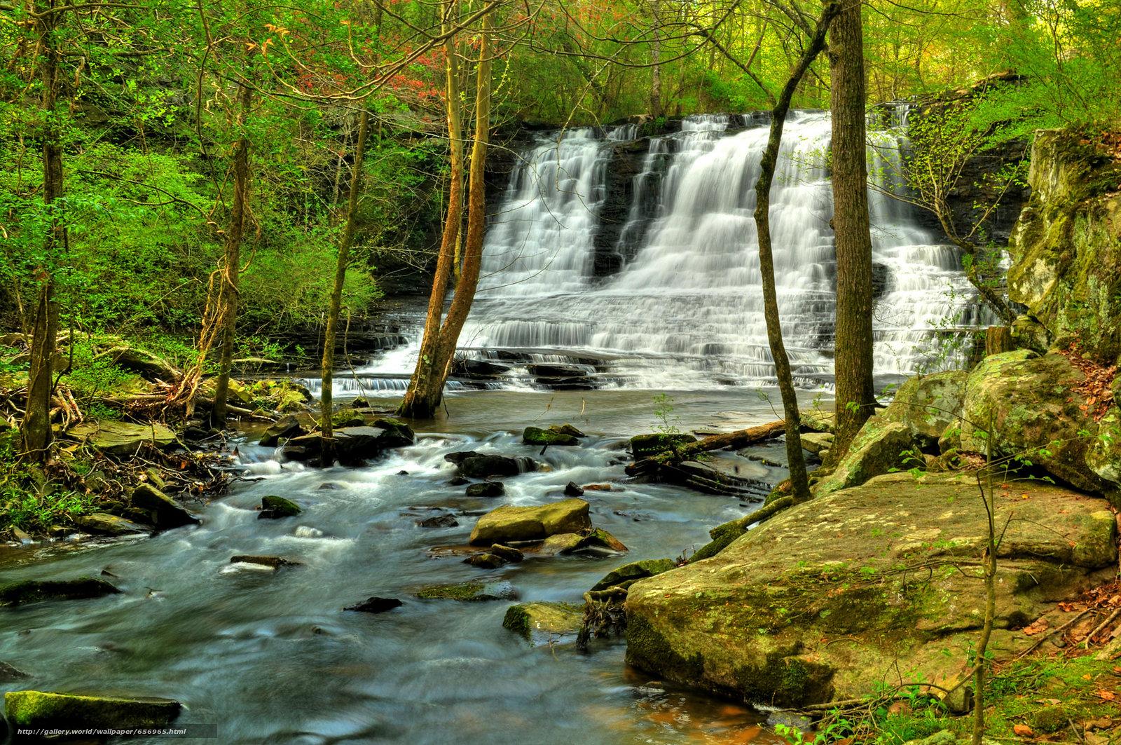 scaricare gli sfondi foresta,  fiume,  Rocce,  alberi Sfondi gratis per la risoluzione del desktop 2048x1360 — immagine №656965