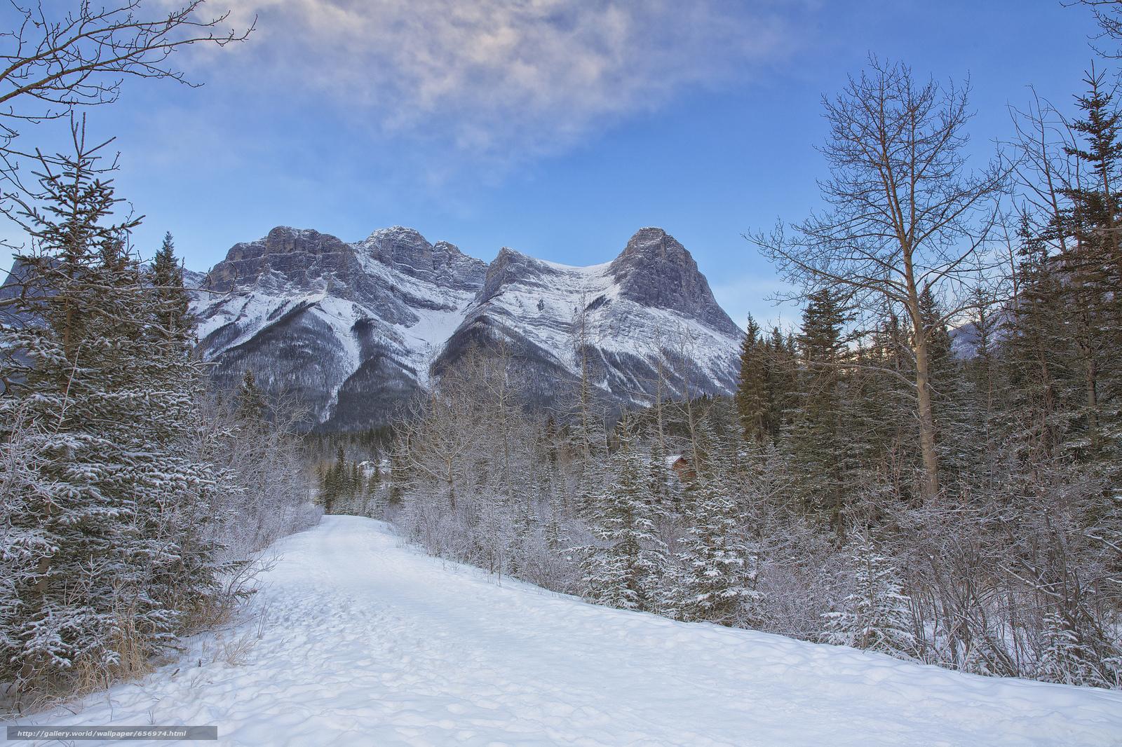 scaricare gli sfondi inverno,  Montagne,  stradale,  alberi Sfondi gratis per la risoluzione del desktop 2048x1365 — immagine №656974