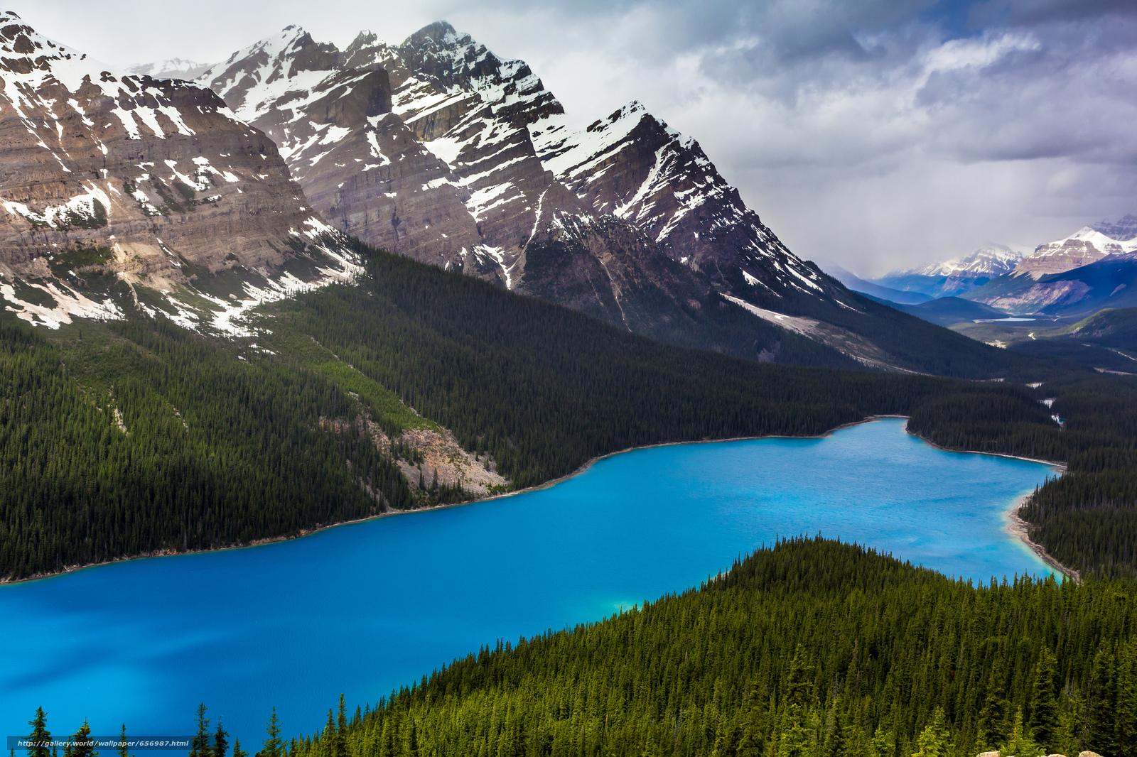 scaricare gli sfondi Lago Peyto,  Parco Nazionale di Banff,  Alberta,  Canada Sfondi gratis per la risoluzione del desktop 2048x1365 — immagine №656987