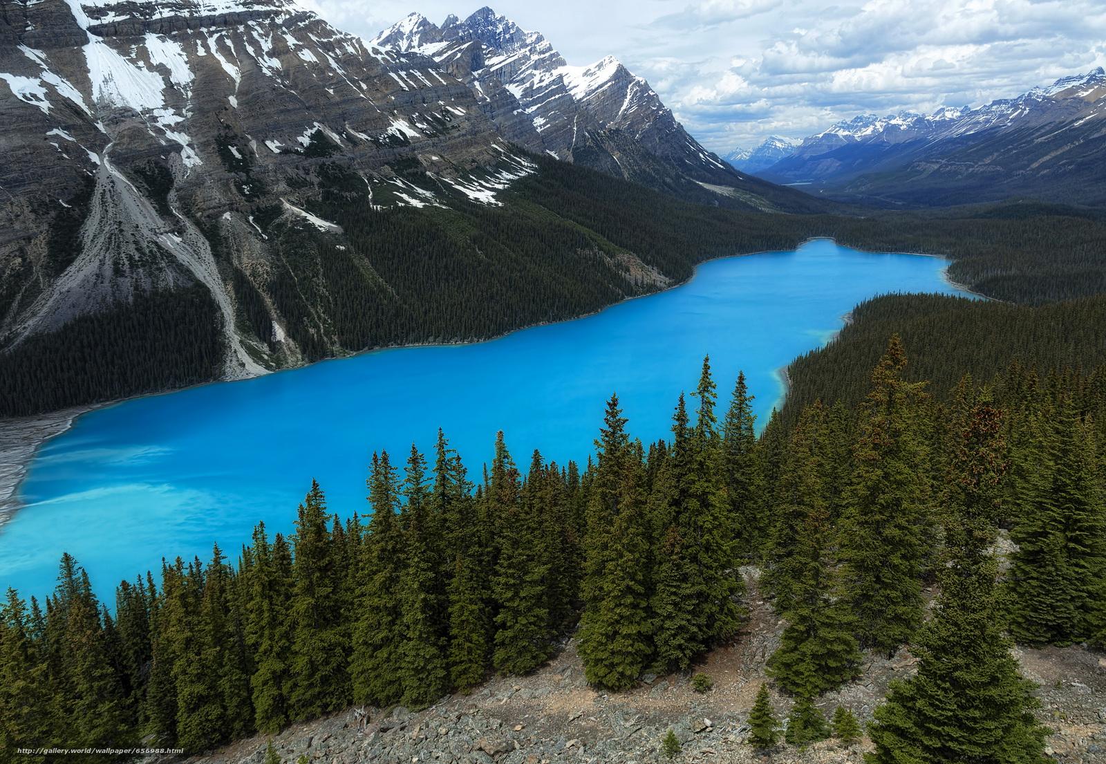 Download wallpaper Peyto Lake,  Banff National Park,  Alberta,  Canada free desktop wallpaper in the resolution 2048x1414 — picture №656988