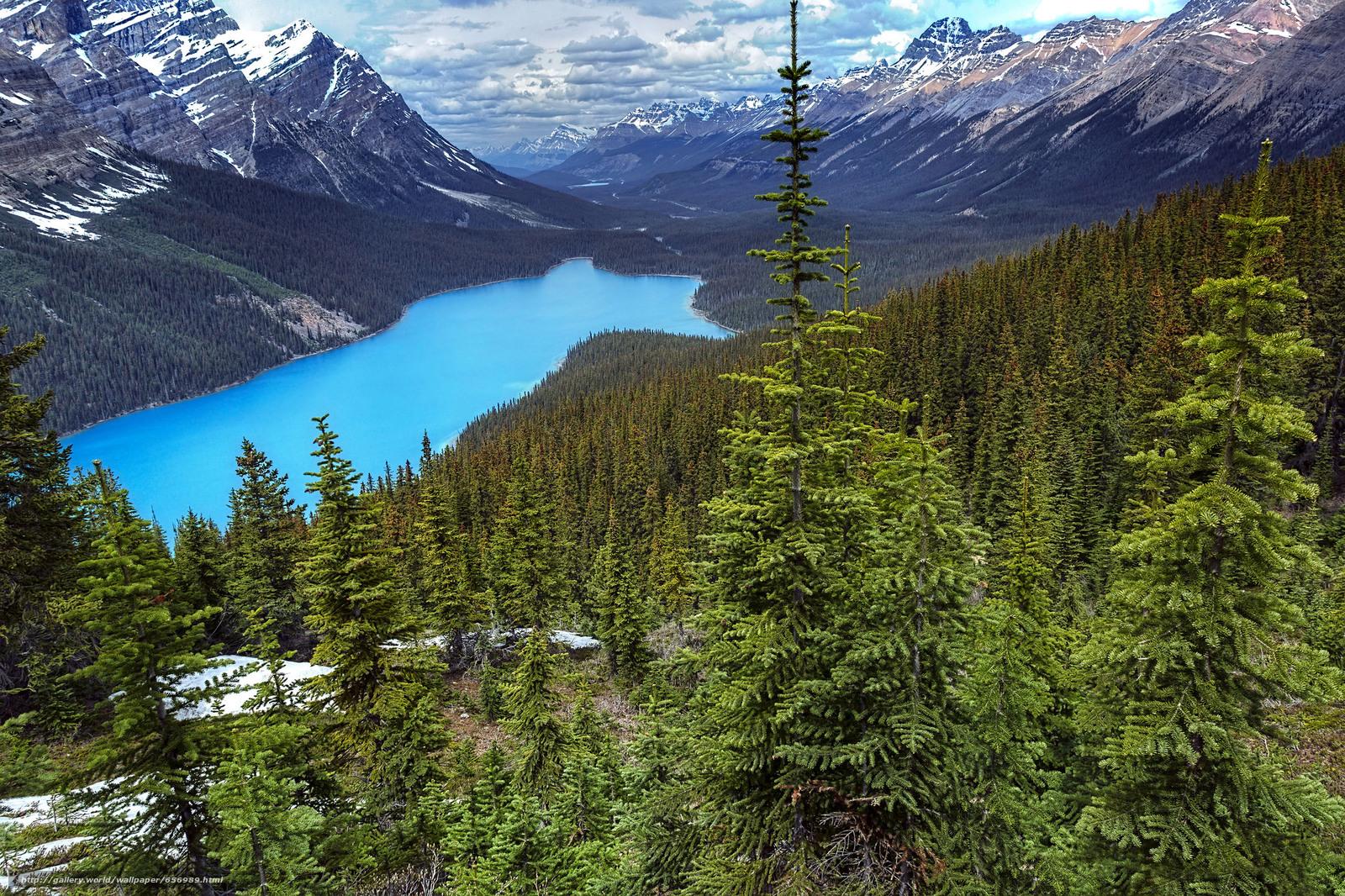 Download wallpaper Peyto Lake,  Banff National Park,  Alberta,  Canada free desktop wallpaper in the resolution 2048x1365 — picture №656989