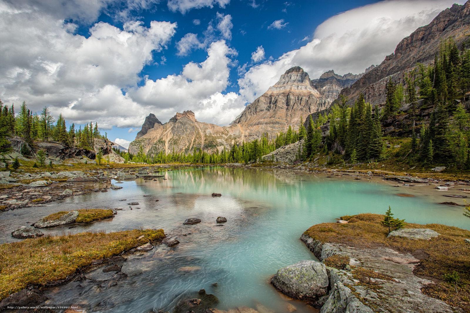 scaricare gli sfondi lago,  Montagne,  alberi,  paesaggio Sfondi gratis per la risoluzione del desktop 2048x1365 — immagine №656991